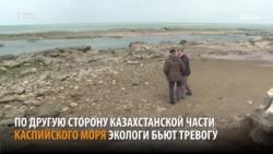 Каспий. Новое Аральское море?