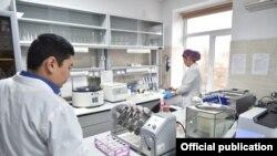 В лаборатории по изучению анализов на COVID-19. Иллюстративное фото.