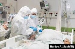 Lélegeztetett betegeket ápolnak