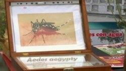 США приготовились истреблять комаров