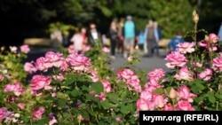 Розы на Приморском бульваре