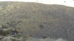 Гlандигlурул рагlалда бугеб чороклъи