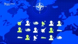 Северна Македонија во НАТО - очекувања
