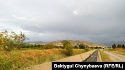 Аламүдүн районундагы каналдардын бири