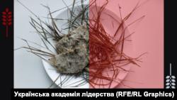 Студенти створили онлайн-ресторан зі стравами, які допомогли українцям вижити у Голодомор (фотогалерея)