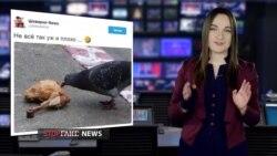 Фейк: Украина не может профинансировать Евровидение (видео)
