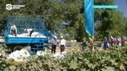 Азия: туркменских учителей заставляют собирать хлопок