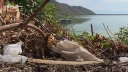 Ekološke krize u ekološkoj državi
