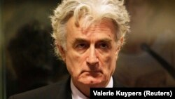 Радован Караджич.