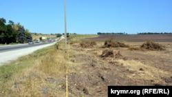 Лесополоса, уничтоженная при строительстве трассы «Таврида», август 2017 года