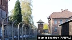 Територія табору Освенцим