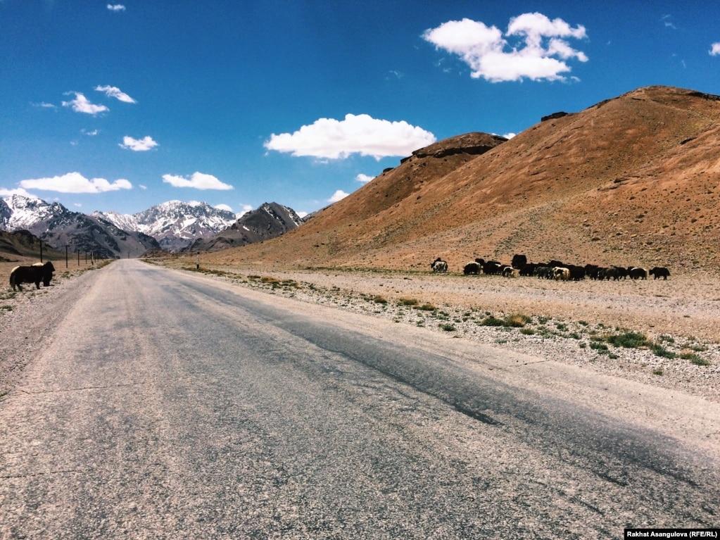 Памир жолының көп бөлігі Тәжікстан аумағынан өтеді. Бұл жол ел астанасы Душанбе қаласын Бадахшан өңірінің орталығы Хорог қаласымен жалғап жатыр.