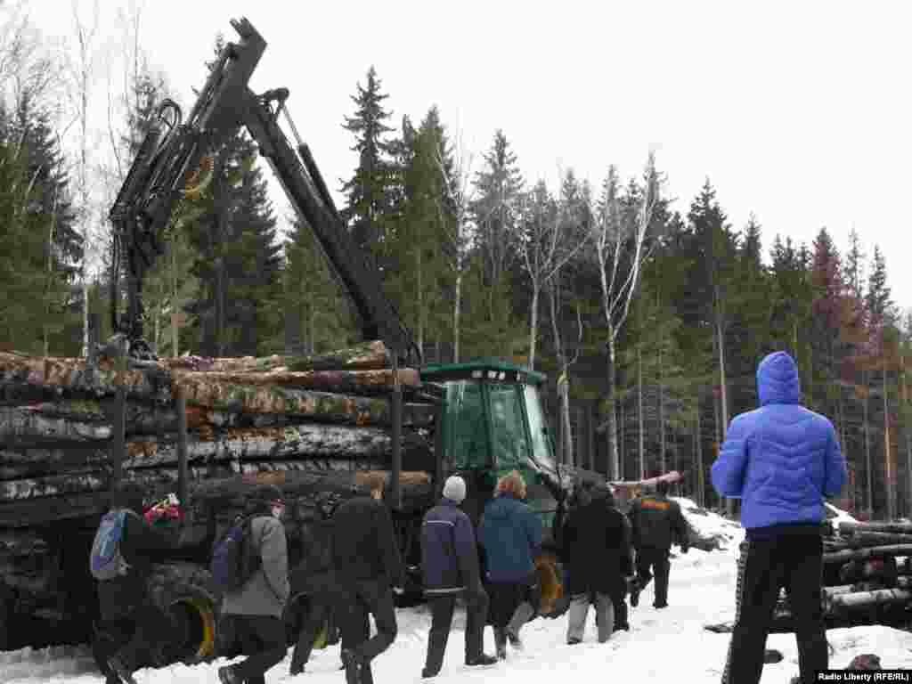 Защитники Химкинского леса протестуют против продолжения строительства трассы Москва-Санкт-Петербург