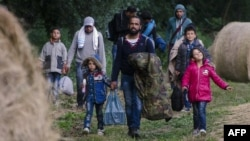 Միգրանտները Հունգարիայի և Սերբիայի միջև «կանաչ» սահմանին, 23-ը հունիսի, 2015թ․