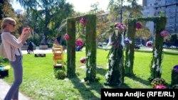 Sajam cveća u Beogradu