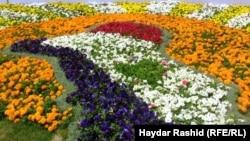 من مهرجان بغداد الدولي للزهور