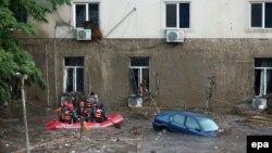 Ведмідь сидить на вікні другого поверху будівлі на затопленій вулиці в Тбілісі, 14 червня 2015 року