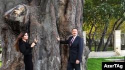 İlham Əliyev və xanımı Mehriban Əliyeva qovaq ağacının qarşısında xatirə şəkli çəkdirirlər, 14 oktyabr 2010