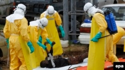 Работники санитарно-эпидемиологической службы Либерии подбирают тело одной из жертв Эболы на улице Монровии