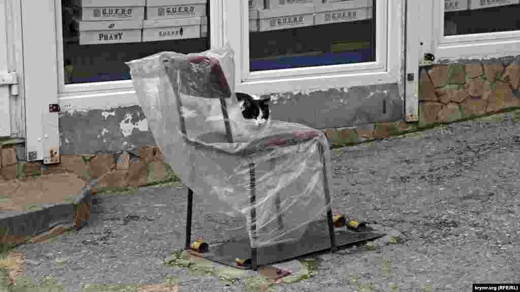 Настоящий гурзуфский кот предпочитает стул асфальту