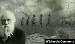 """Чарлз Дарвиндин """"Жан-жаныбарлардын түрлөрүнүн пайда болушу"""" (1859-жыл) китебинде алгачкы ирет органикалык дүйнөнүн келип чыгышы түшүндүрүлөт."""