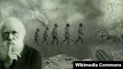 Чарлз Дарвін