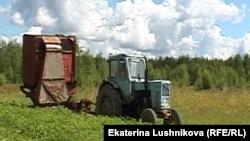 На ферме Василия Шулакова