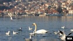 Илустрација: Охридско Езеро.