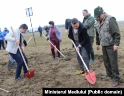Împădurire finanțată de Ministerul Mediului în Oltenia
