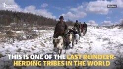 The Dukha: Mongolia's Last Reindeer Herders