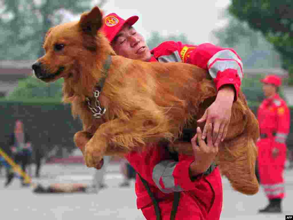 Пошуково-рятувальна собака стрибає через руки тренера з Інженерного полку Народно-визвольної армії Китаю під час демонстрації навичок на околиці Пекіна, 30 липня. Photo by Frederic J. Brown for AFP