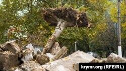 «За підтримки уряду Москви»: вирубка багаторічних дерев у Сімферополі (фотогалерея)
