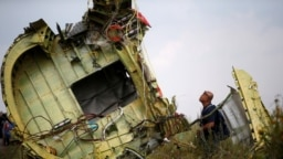 A Malaysian air crash investigator inspects the crash site of Malaysia Airlines flight MH17, near the village of Hrabove on July 22, 2014.