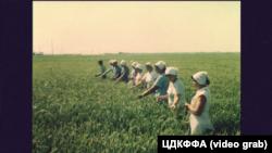 Крим, 1970-і роки, рисові чеки