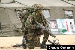 Солдат швейцарской армии