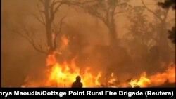 Лясныя пажары ў Аўстраліі. Архіўнае фота