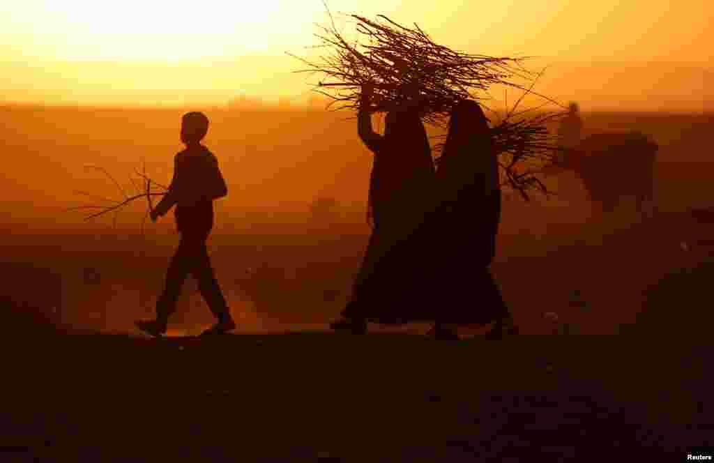 Mosuldaky söweş zerarly ýaşaýan ýerinden göçen adamlar odun ýygýar. Başiga, Yrak.(Reuters/Goran Tomasevic)