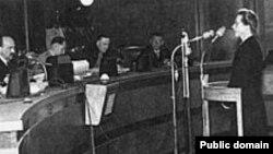 Милада Горакова перед своими судьми