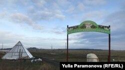 Кедровый питомник под Калининградом