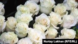 Ruže, ilustrativna fotografija