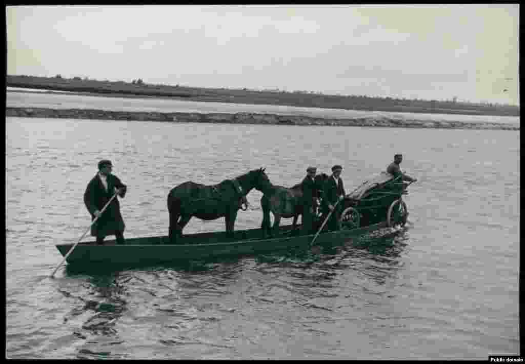 Крестьяне переправляют лошадей и скот через реку Припять в Брестской области
