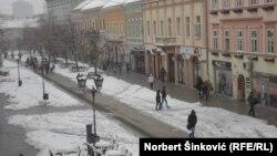 Novi Sad pokriven snegom, 15. mart 2013.