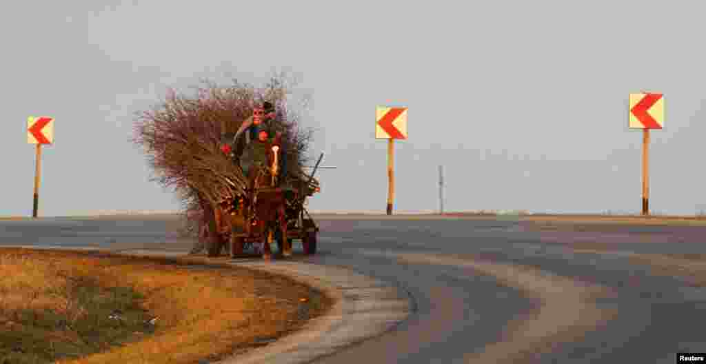 People carry firewood in their horse-driven cart at sunset on a road south of the Romanian capital, Bucharest. (Reuters/Bogdan Cristel)