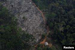 Вырубка тропического леса в бразильском штате Рондония. 2017 год