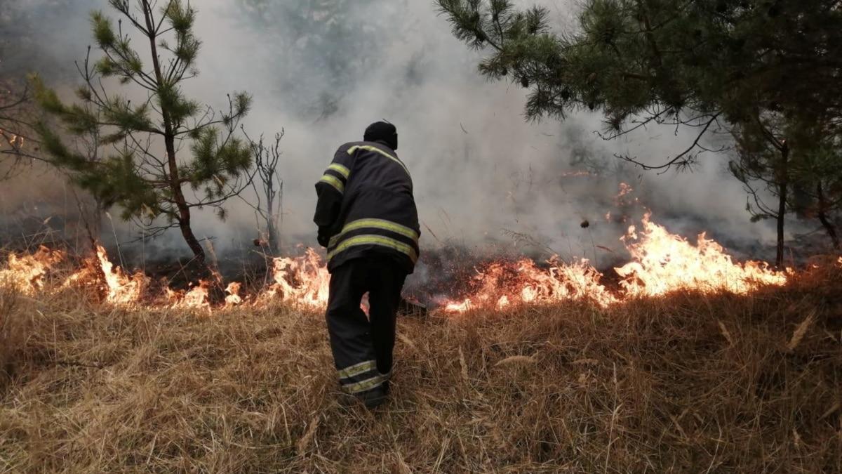 ГСЧС сообщает, что все лесные пожары на Житомирщине и в зоне отчуждения ЧАЭС локализованы
