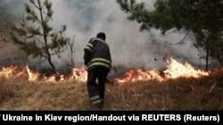 Пожежник гасить вогонь всередині 30-кілометрової зони довкола Чорнобильської АЕС, квітень 2020 року
