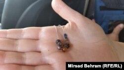 Perlice od jantara i kamena, foto: Mirsad Behram