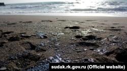 Побережье Судака загрязнено мазутом, 28 ноября 2016 года