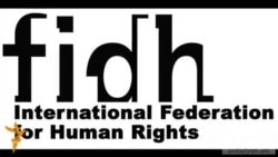 FIDH-ը կոչ է անում Թուրքիային ճանաչել Ցեղասպանության փաստը