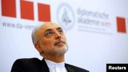 علی اکبر صالحی میگوید ۳۵۹ تن کیک زرد به ذخایر ایران افزوده شده است.